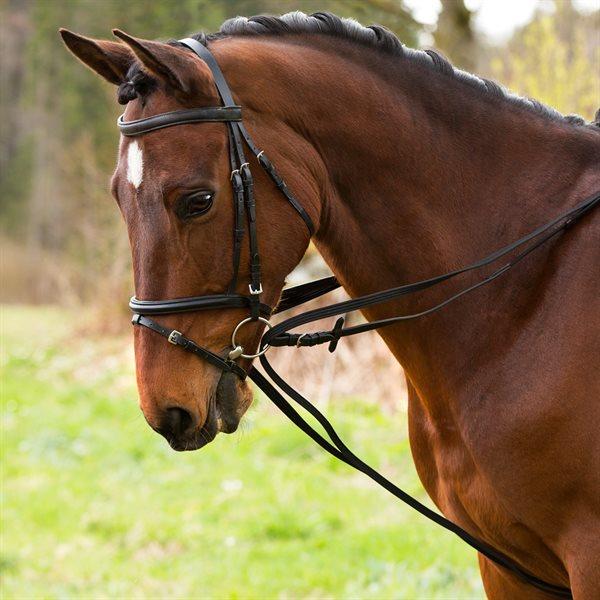 tips og rad hestens udstyr sadan plejer du dit udstyr