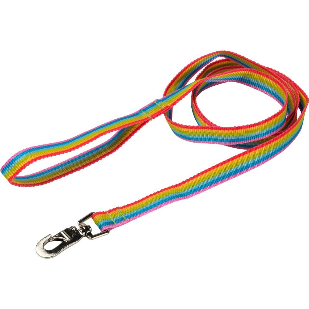 Line  Rainbow traxx®