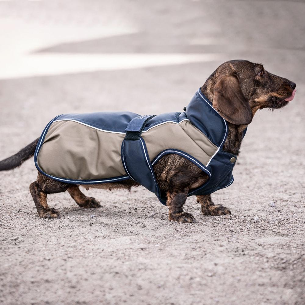 Hundedækken  Idre Showmaster®